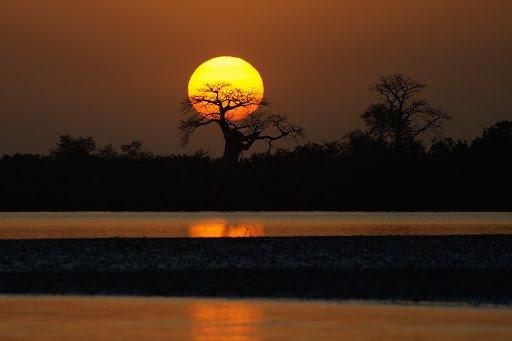 Medici Africa: fare il medico in Senegal